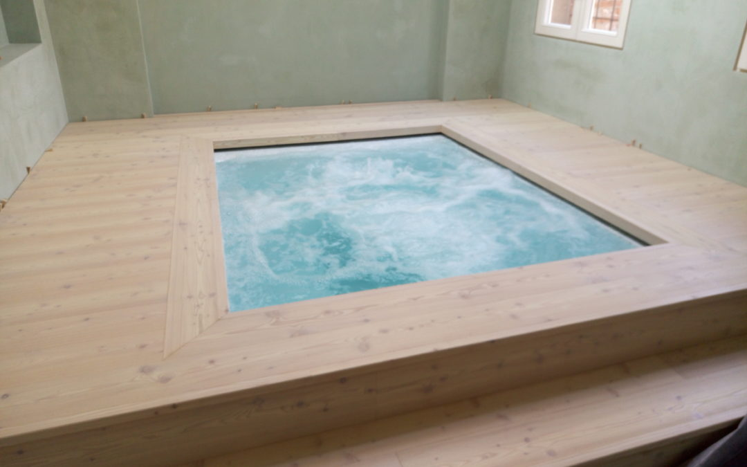 Steam room, jacuzzi and shower